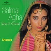 Salma Agha all songs